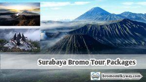 Surabaya Bromo Tour Packages